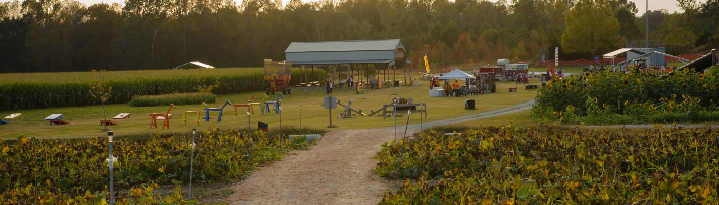 Sunset Valley Farms